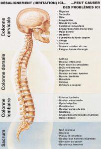 Images symptomes